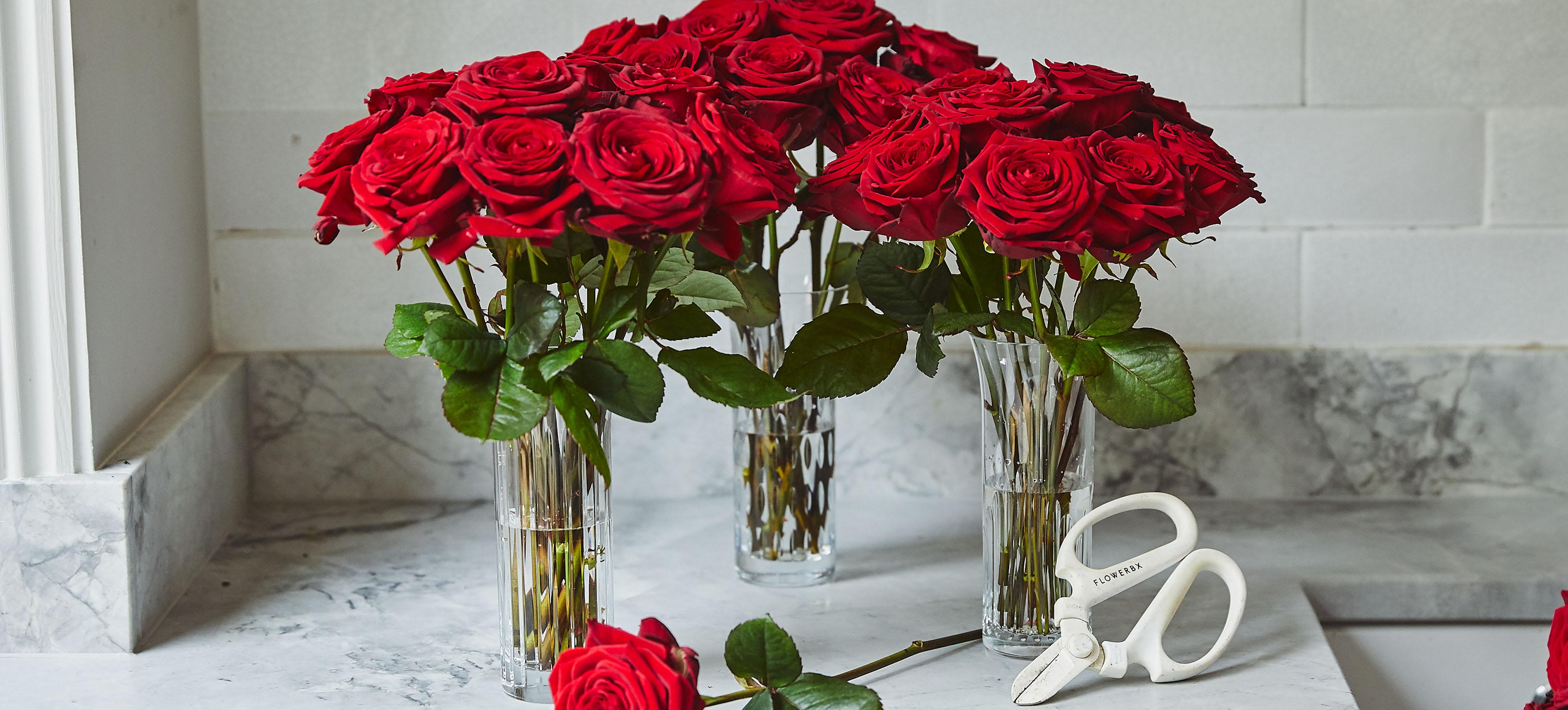 Valentines Vase Sets