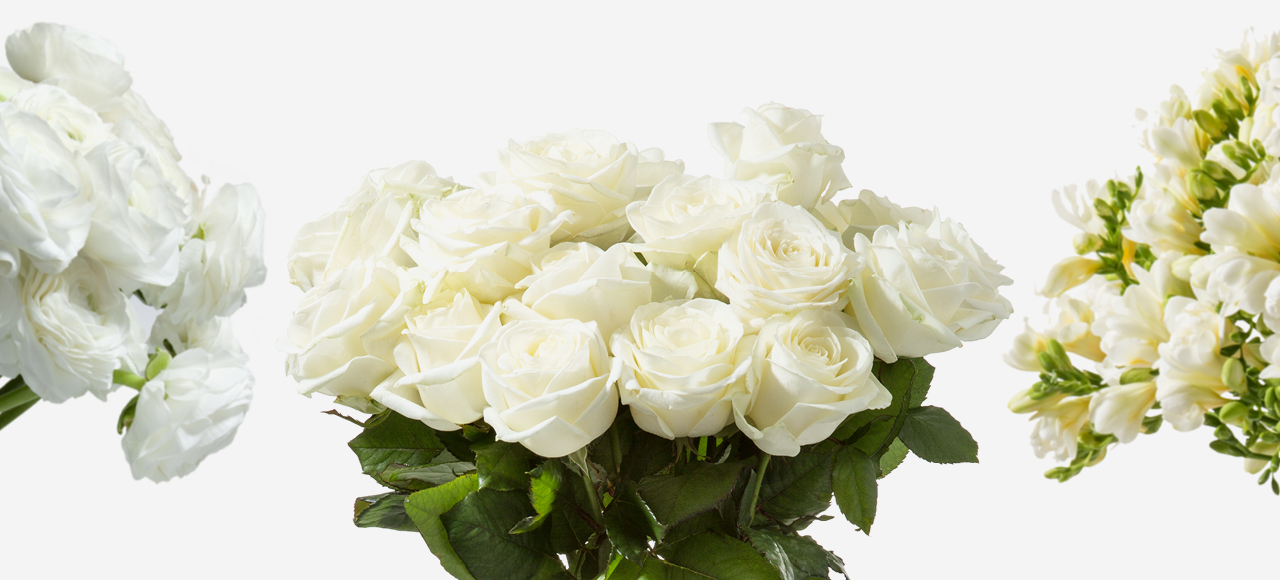 White Flower Subscription