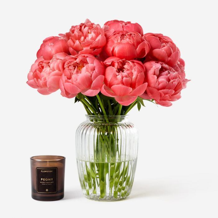 Flamingo Peony Peony Flower Delivery Across The Uk Flowerbx Uk