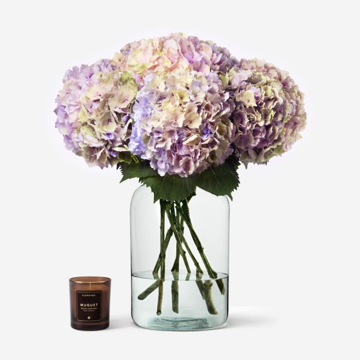 Sophia Gift Collection Hydrangea Flower