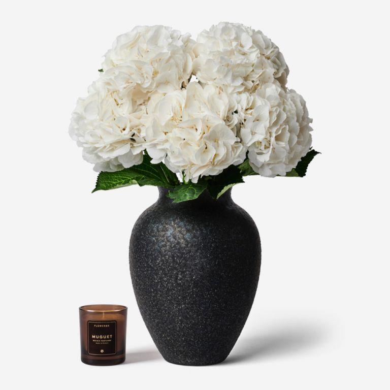 Hortensias et Vase Mayfair