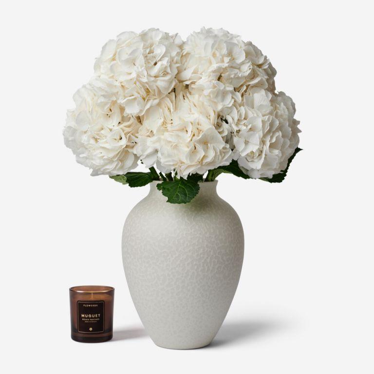 5 hortensias dans un vase Mayfair Blanc Grand