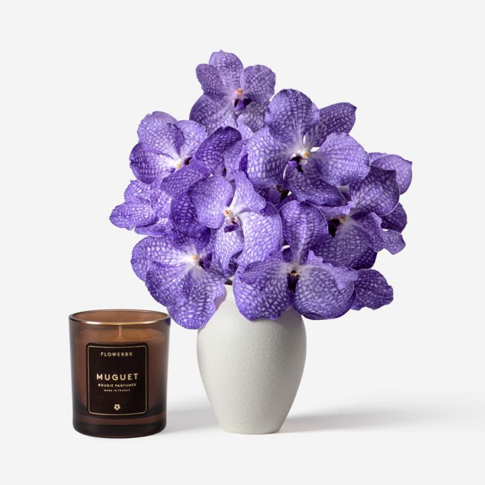 Amethyst Vanda Cut Orchid and Petit Mayfair Blanc