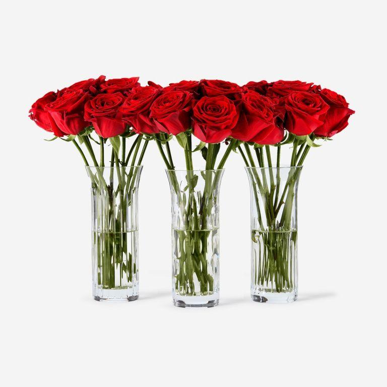 Trio Baccarat Red Naomi Vase Set