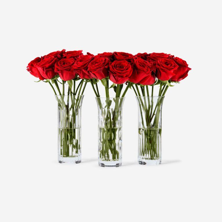 Baccarat Rose Vase Set-Red