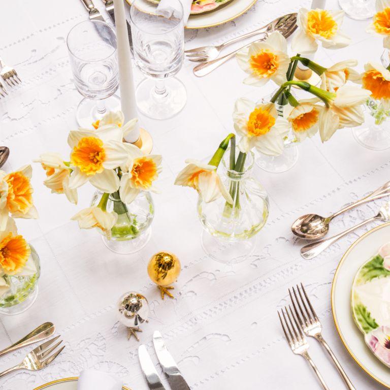 Bailey Bud Daffodil Vase Set