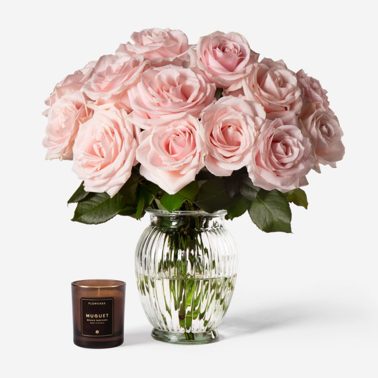 Vase Set Pink Sweet Avalanche Rose