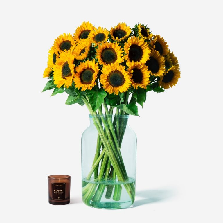 Vase Set Sunflower and Large Apothecary