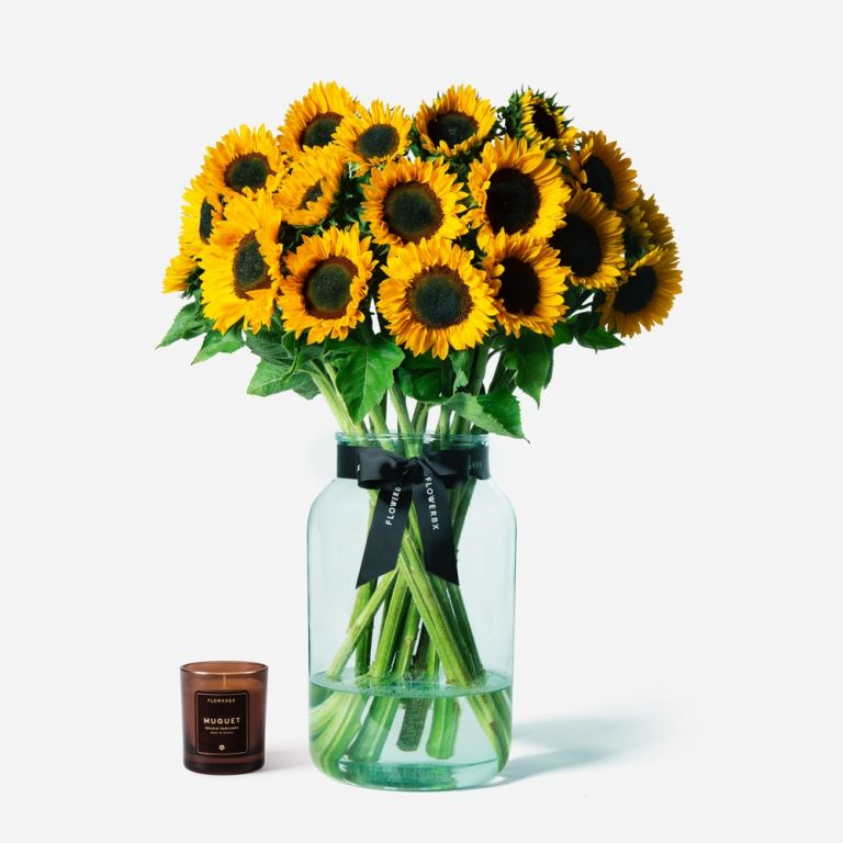 Vase Set Sunflowers and Large Apothecary