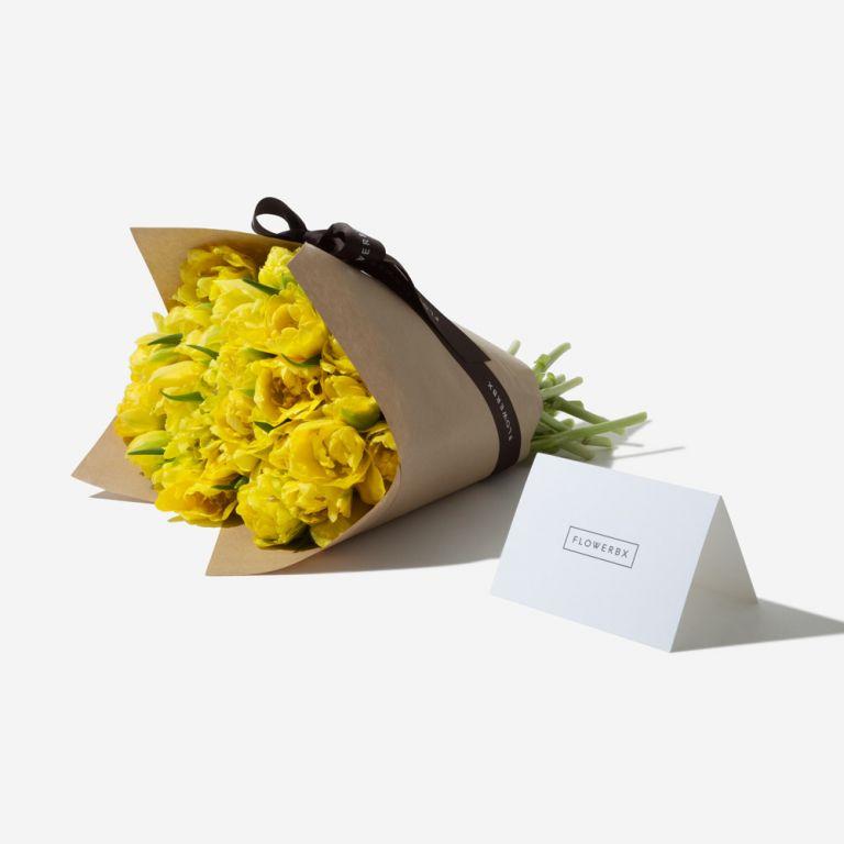 Mellow Yellow Double Tulip