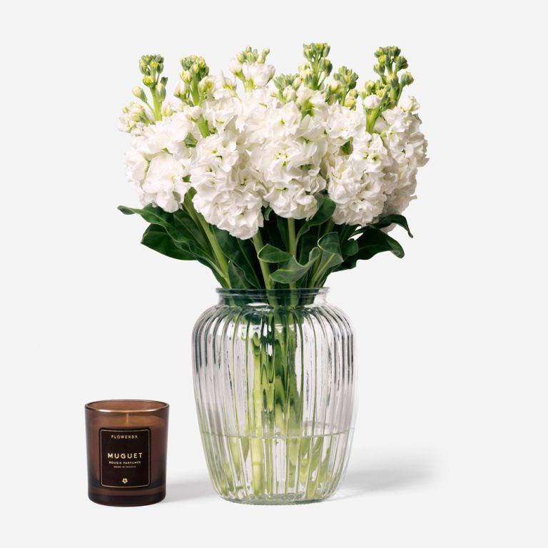 10 stems in a Medium Curve Windsor vase