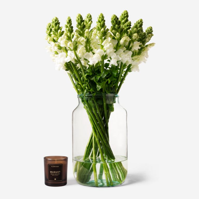 Vase Set Snazzy White Snapdragon