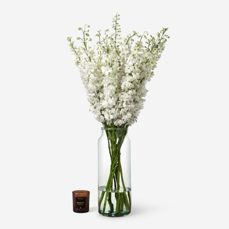 10 stems in the Tall Apothecary vase