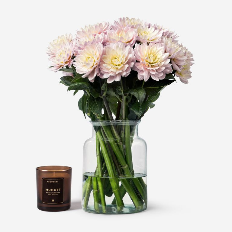 15 stems in a Small Apothecary vase