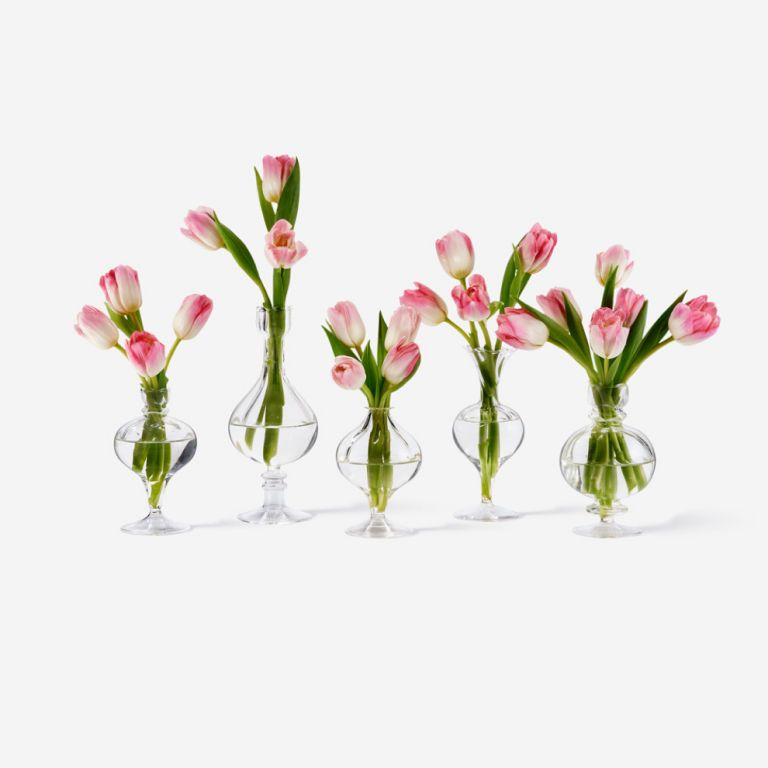 Bailey Bud Tulip Vase Set