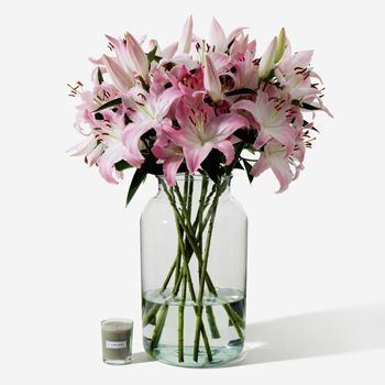 Sorbonne Pink Long-Stem Deluxe Lily