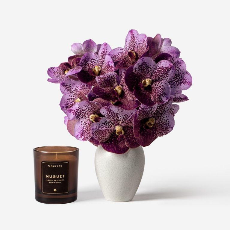 Vanda Cut Orchid and Mayfair Vase Set