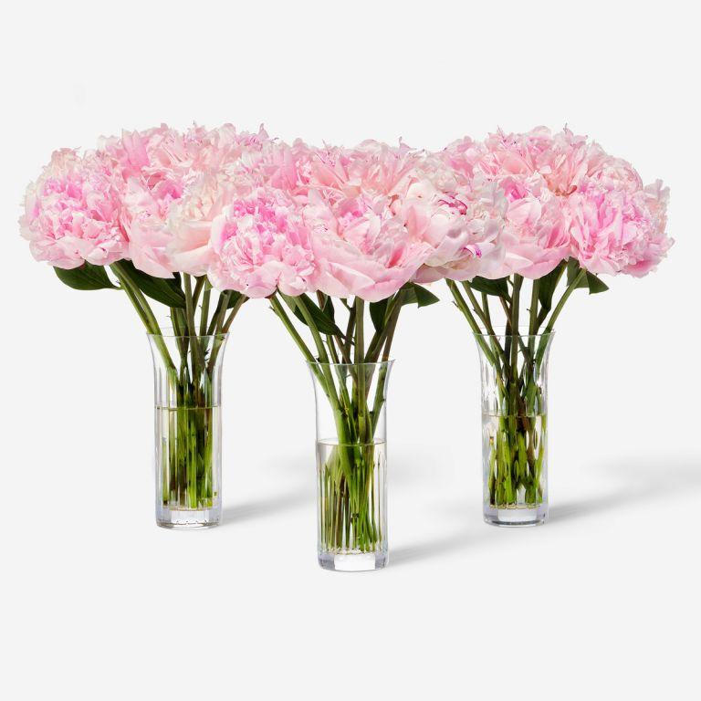 30 stems in Baccarat Vase Set