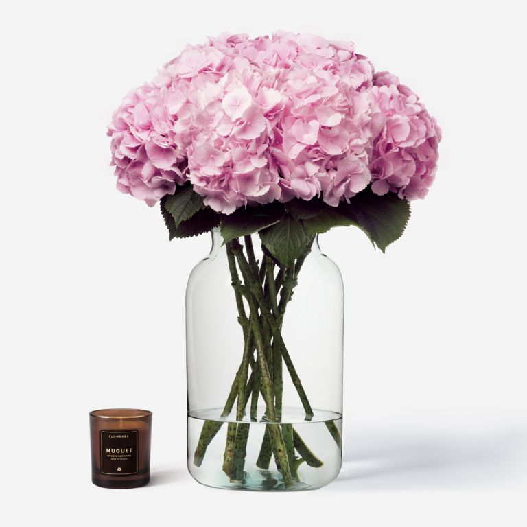 10 stems in a Large Apothecary vase