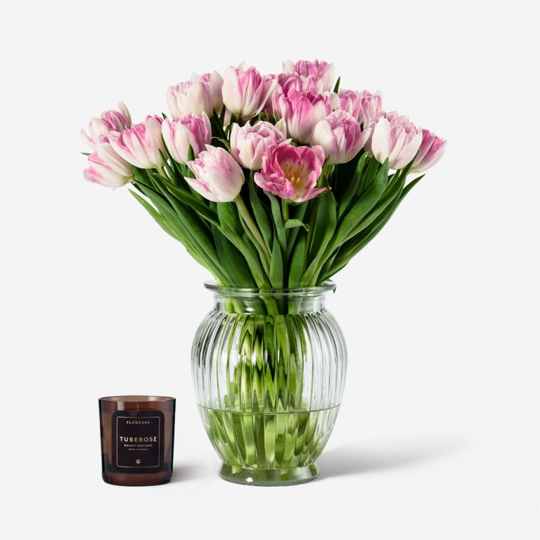 Tulip and Candle Gift Set