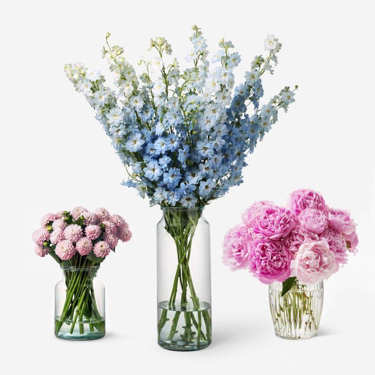 Deluxe flower colour