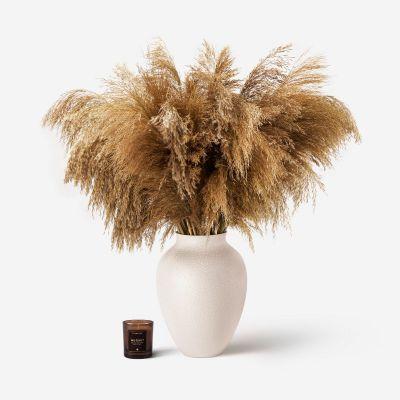 Mayfair Pampas Grass Vase Set