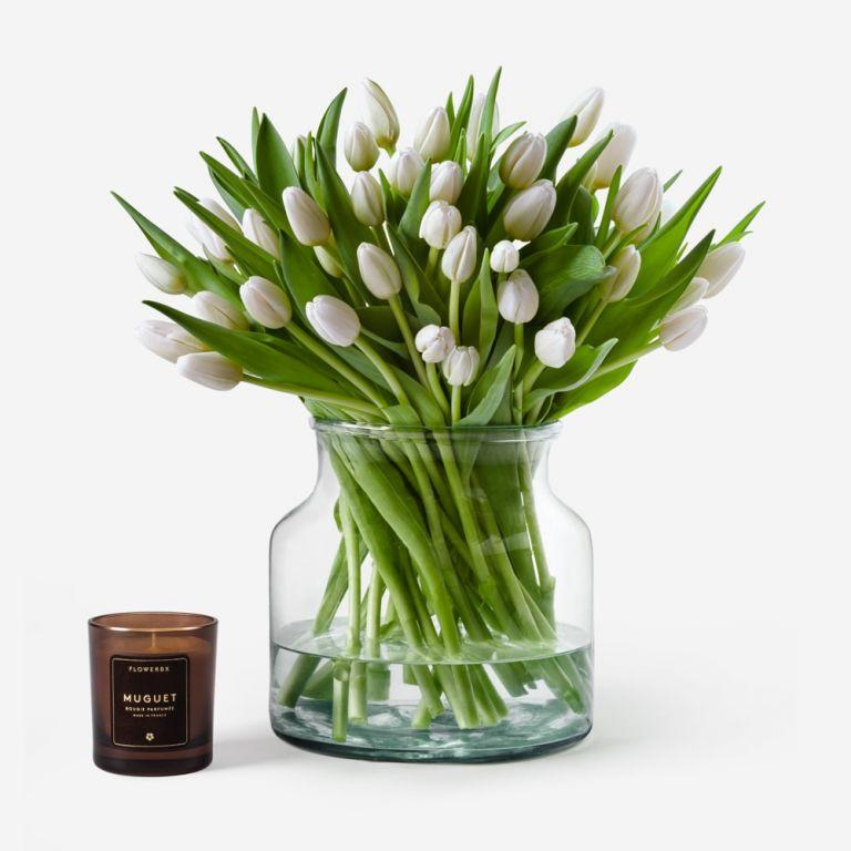 Ascot White British Tulip