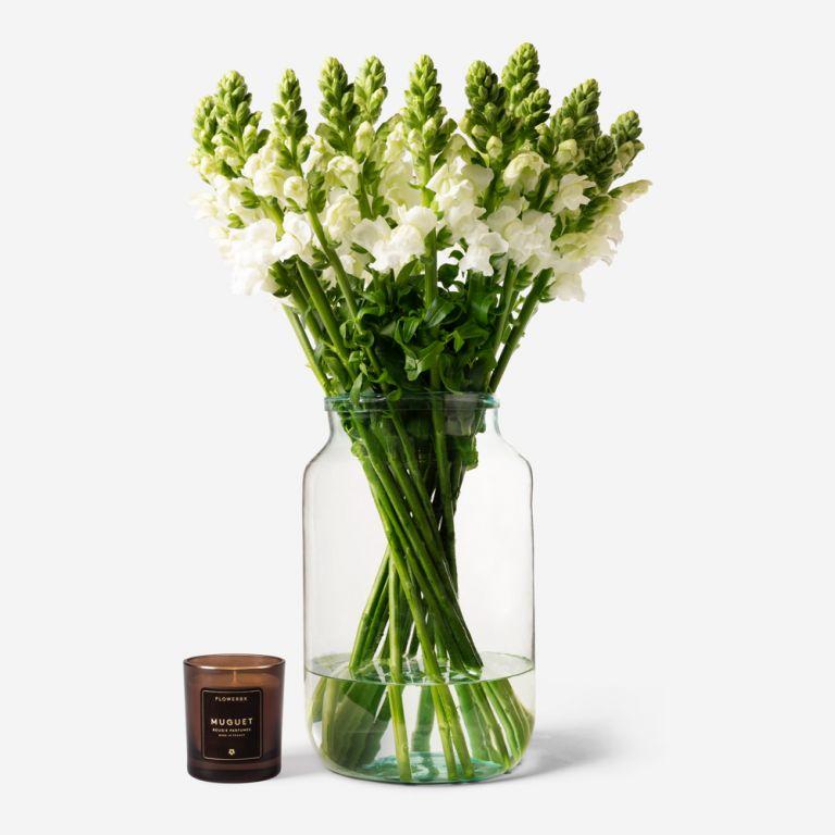Vase Set Snazzy White Snapdragon