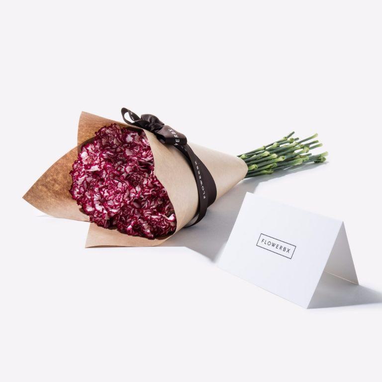 Candy Cane Carnation