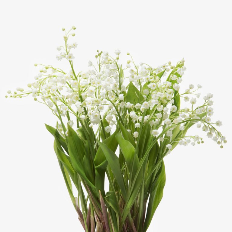 Bridal White Lily of the Valley & Muguet Candle Set