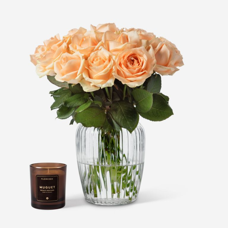 20 stems in Medium Curve Windsor vase