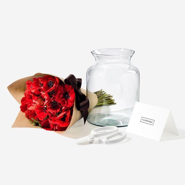 Anemone Gift Set