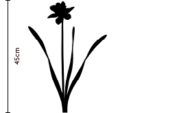 Daffodil Silhouette